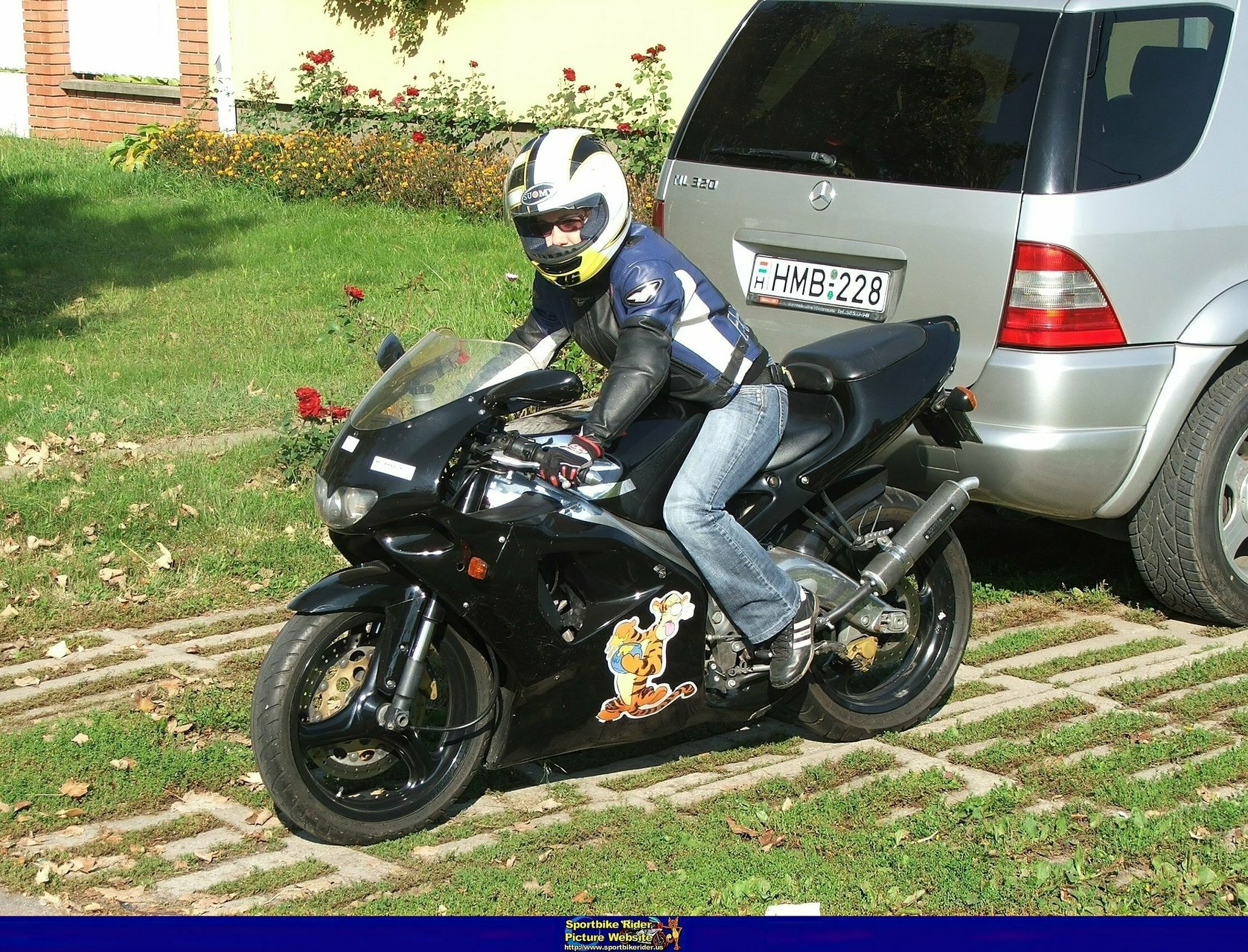 Aprilia RS Models - ID: 351868