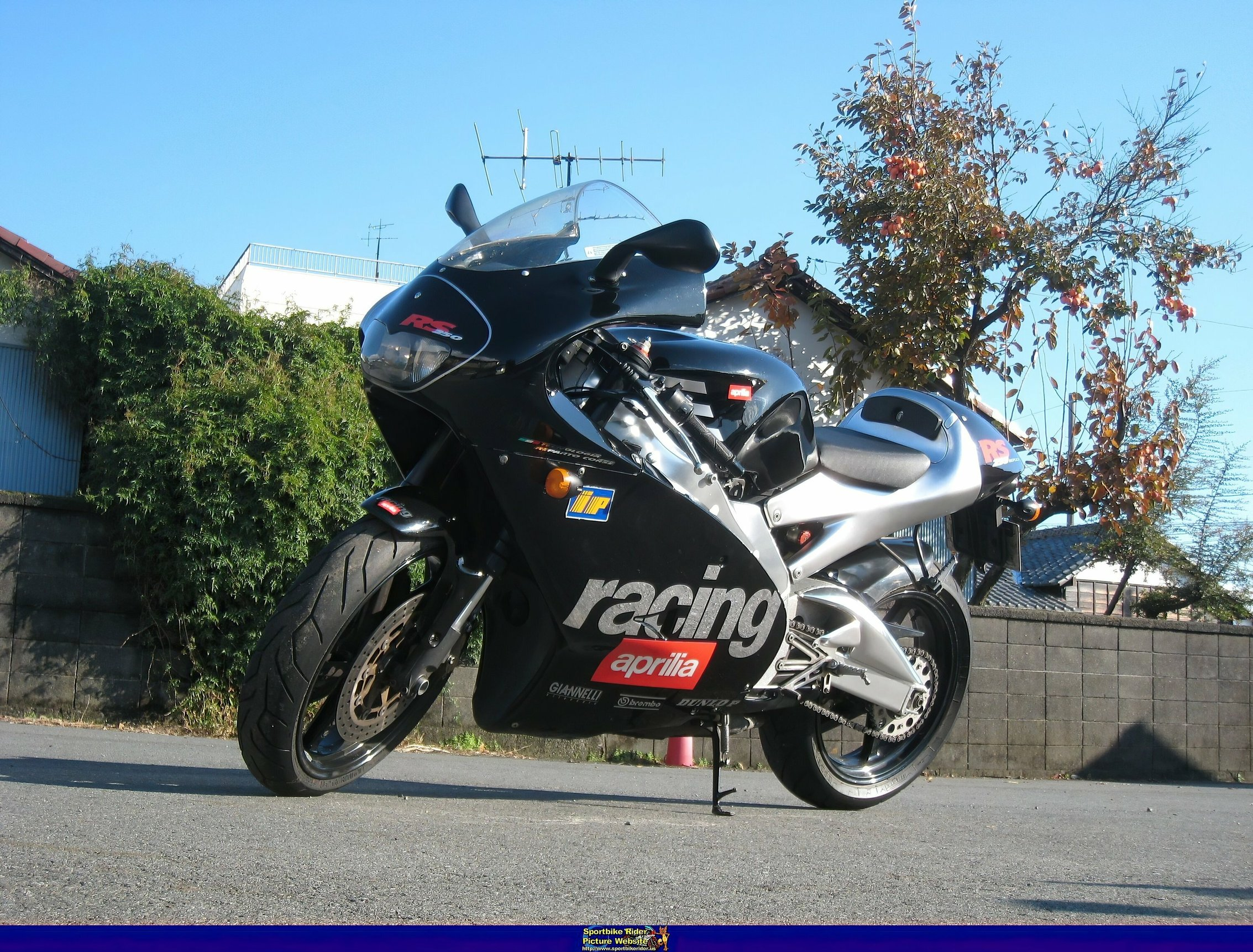 Aprilia RS Models - ID: 356960