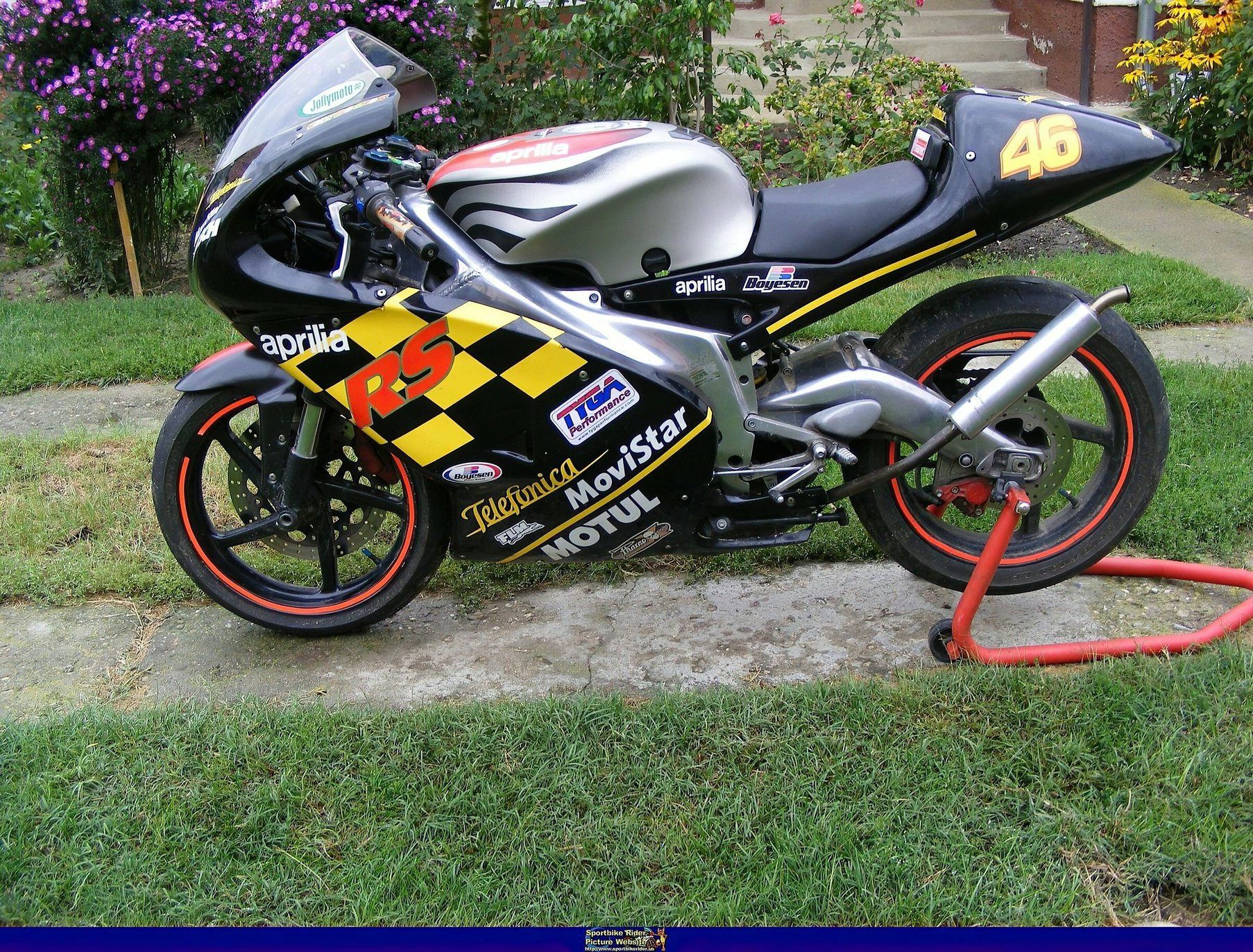 Aprilia RS Models - ID: 332616