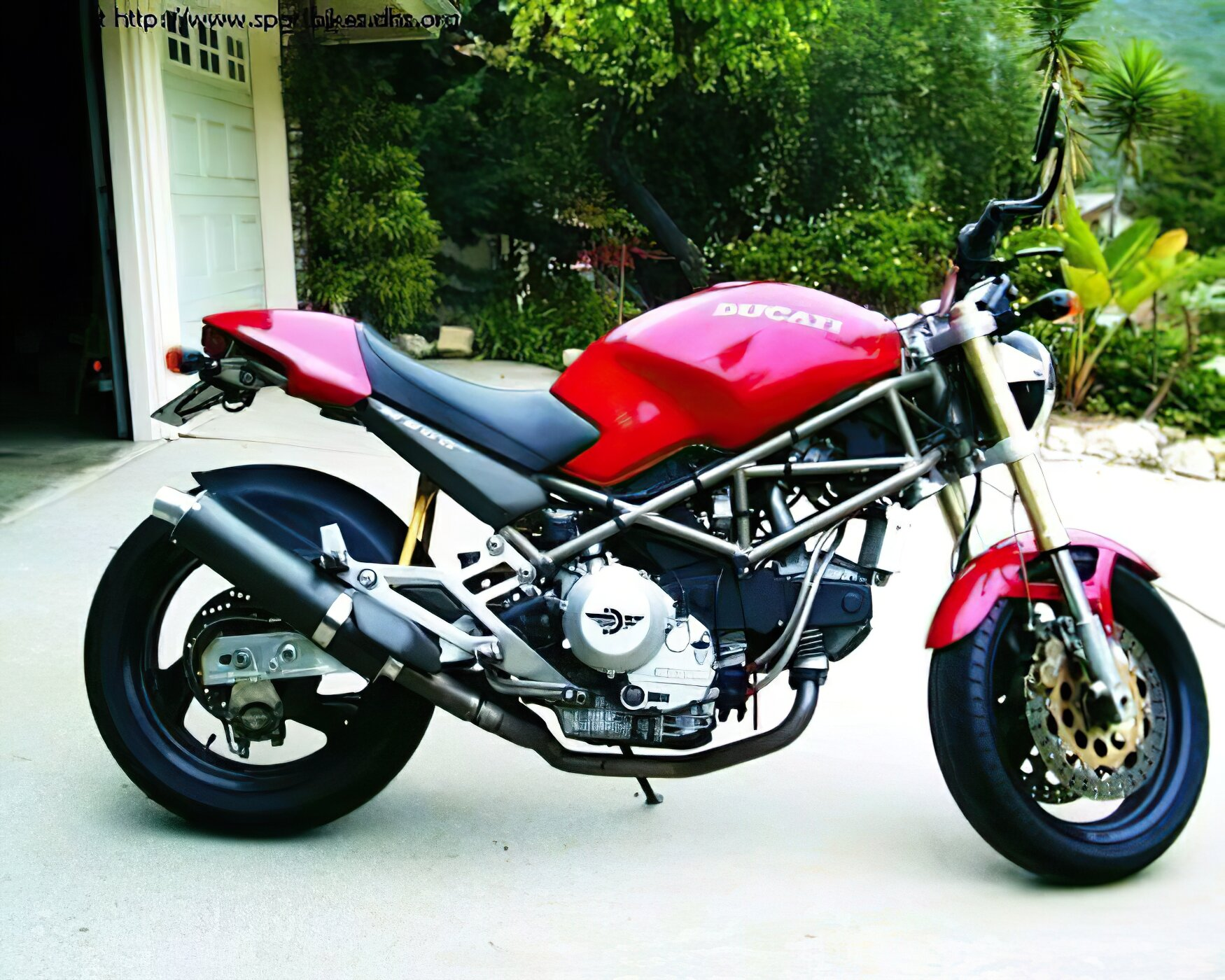 Ducati Monster Models - ID: 3529