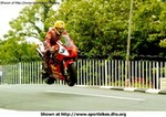 Misc. Racing Honda RC51, Joey Dunlop at the 2000 Isle of Mann.