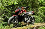 Production (Stock) MV Agusta Brutale series, Production (Stock)- MV  Agusta Brutale series Sportbike