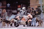 Humor Suzuki Hayabusa, That's a bad dog!