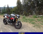 Production (Stock) Triumph Speed Triple, 2015 TRIUMPH SPEED TRIPLE a 2015 Triumph Speed Triple sportbike parked on the side of the road
