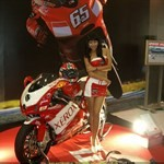 Women Ducati 999, Hot babe with a Ducati 999 motorcycle! a person riding a Ducati 999 sportbike on display