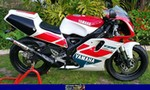 Production (Stock) Yamaha TZR250, 1992 Yamaha TZR250R SP. A red motorcycle parked in a grassy area a red and black 1992 Yamaha TZR250 Sportbike is parked on the grass