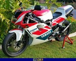 Production (Stock) Yamaha TZR250, 1992 Yamaha TZR250R SP. A red motorcycle parked in a grassy area a red 1992 Yamaha TZR250 Sportbike parked in a grassy field